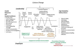 Worden's Model for Culture Change