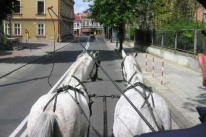 horse-carriage-422px.jpg