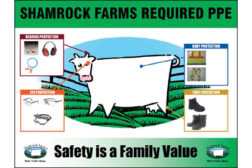 Shamrock farms sign