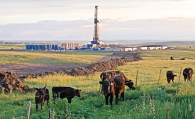 Bakken oil field