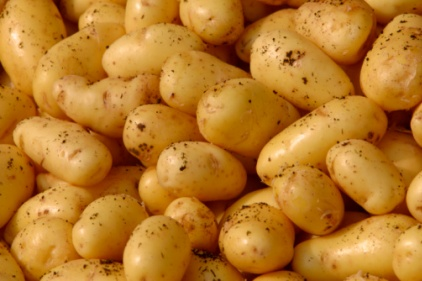 potatoes-422.jpg